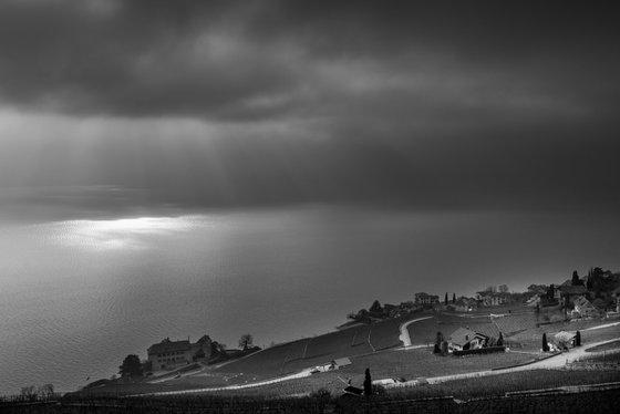 Vineyards of Lavaux and Lake Geneva
