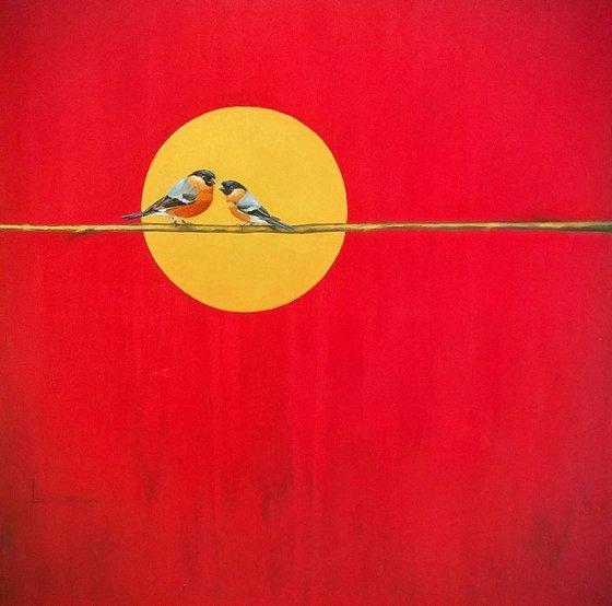 Bird of red