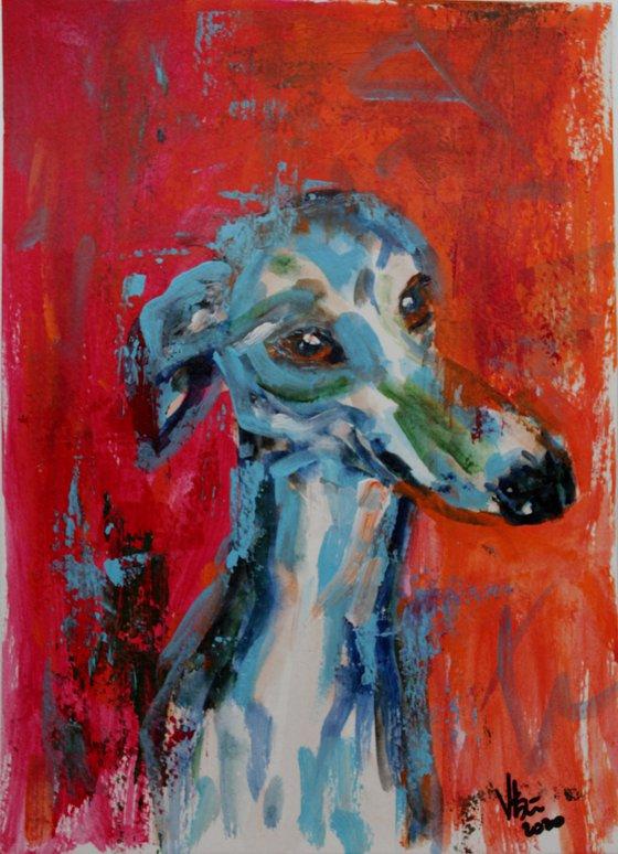 Hero - Dog- animal art painting - grey hound painting-whippet- dog lovers gift