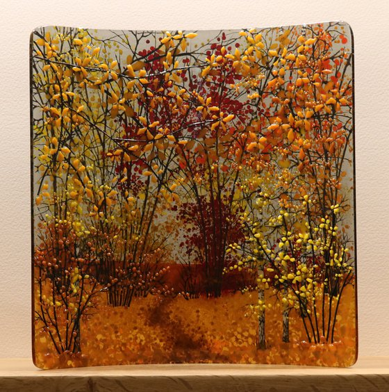 Glass Autumn Square Curve (Made to Order)