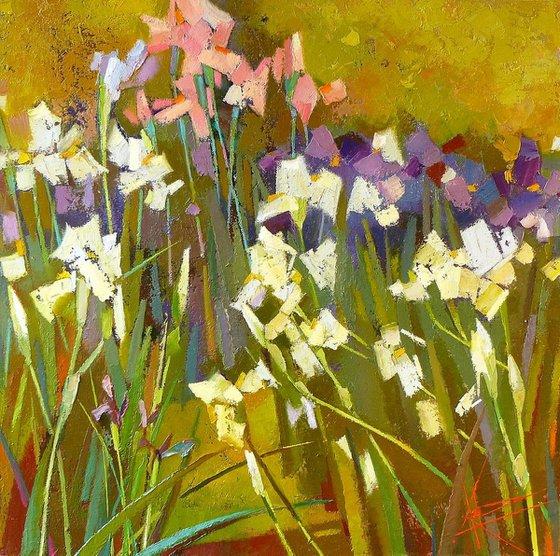 Iris season