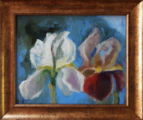 Painting | Oil | Iris Kiss Kiss