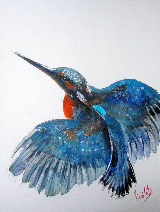 The Kingfisher 1