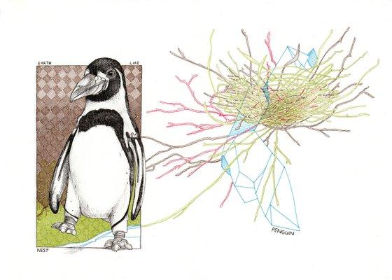 Earth, life, nest, penguin