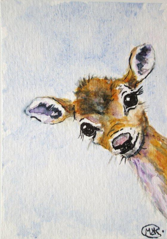 Fawn Deer Miniature ACEO original painting