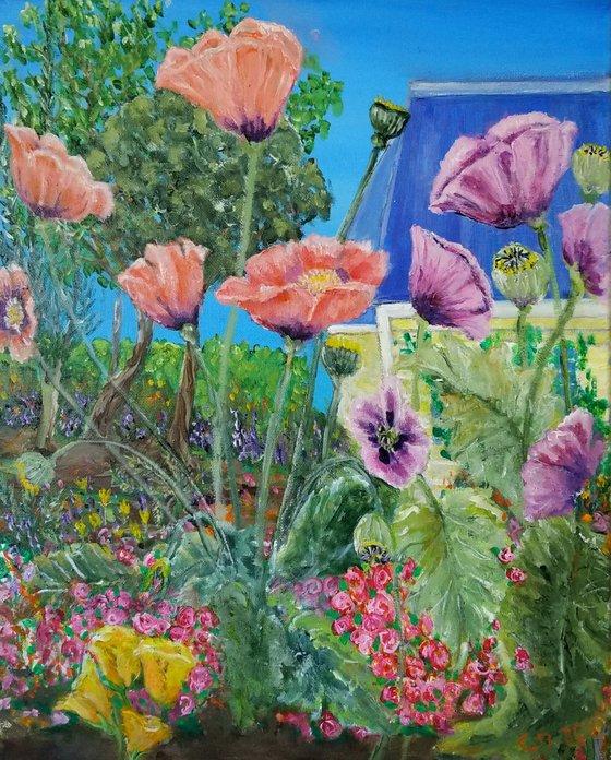 Tim's Garden