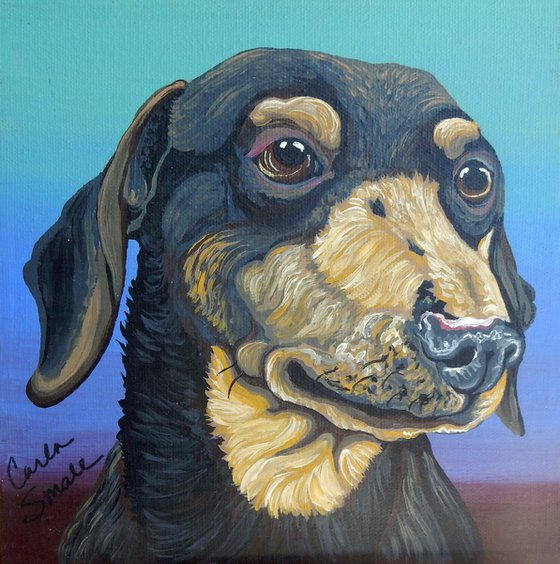 Dachshund Pet Dog Original Art Painting-8 x 8 Inches Stretched Canvas-Carla Smale
