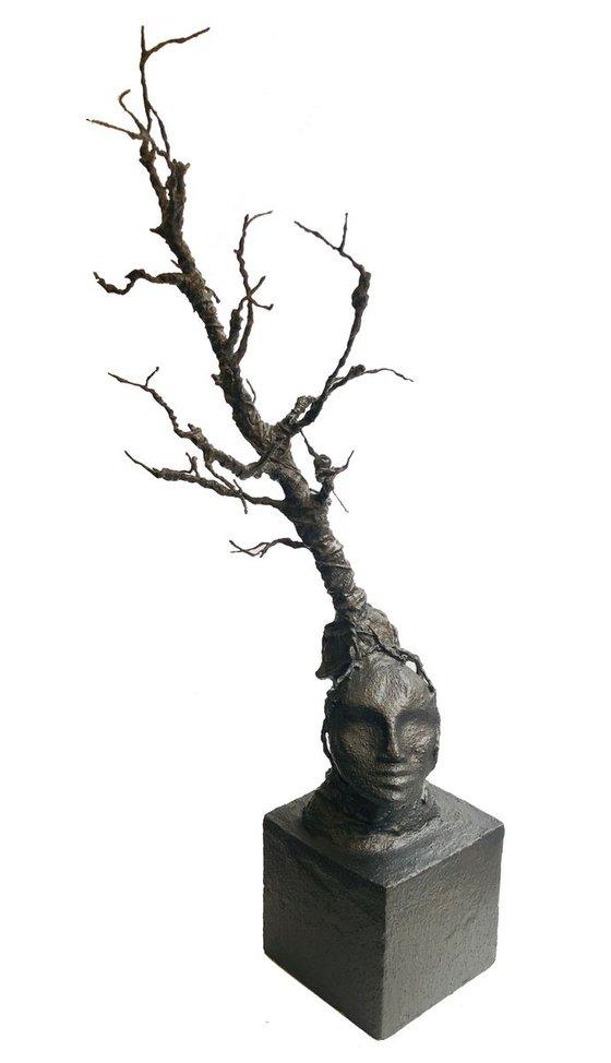 Accueil Oeuvres Arborescence de la Pensée Arborescence de la Pensée