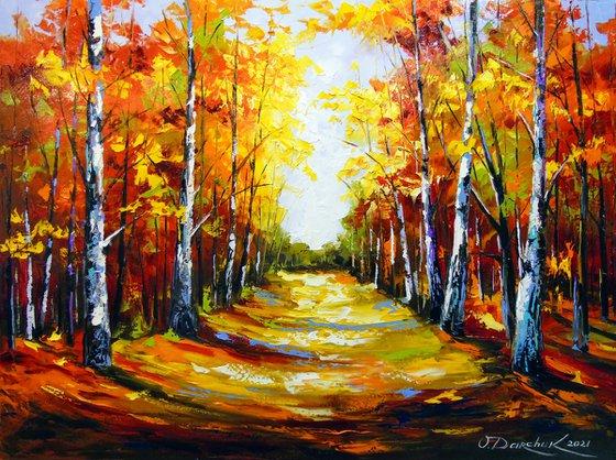 Birch road to light