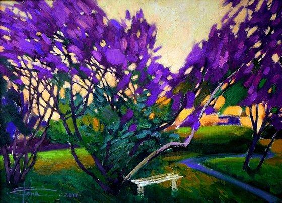 Ancient lilacs