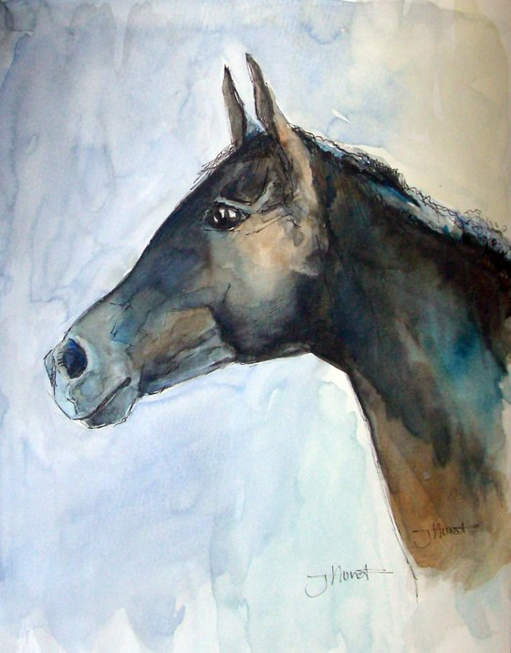 Thoroughbred Racehorse Portrait