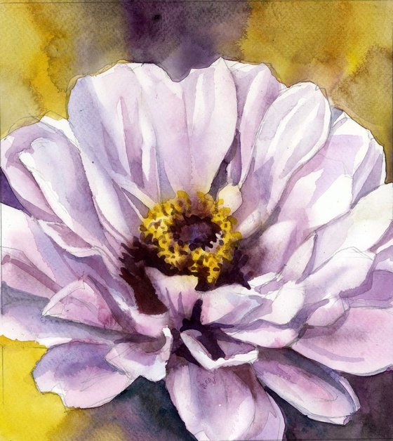 pink zinnia watercolor floral