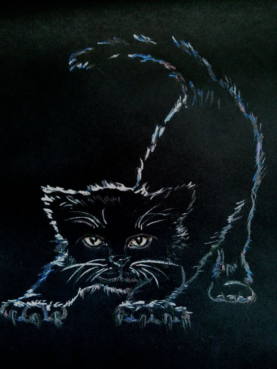 Black kitten in a dark room
