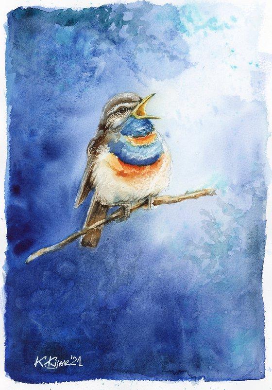 Bluethroat, watercolor of birds and wildlife