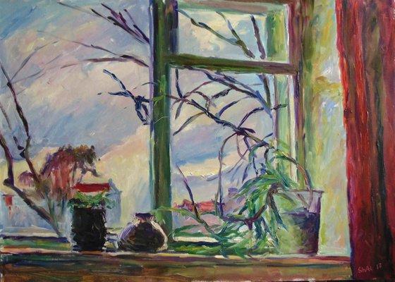 Window with aloe
