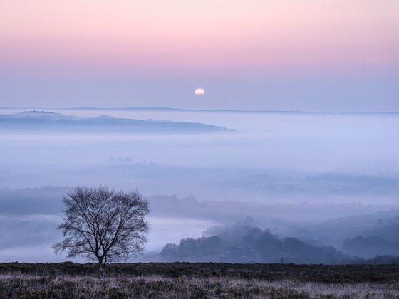 Soft sunrise - Dartmoor