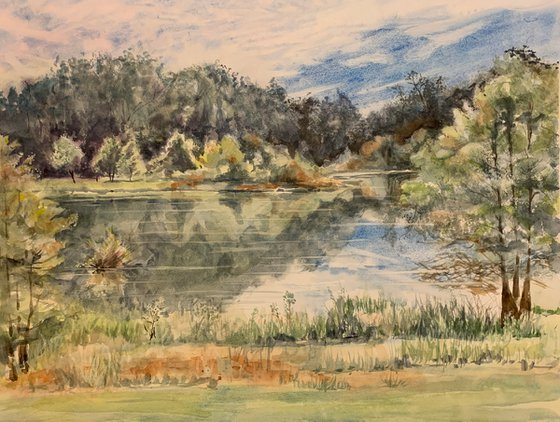 Pedrick Pond