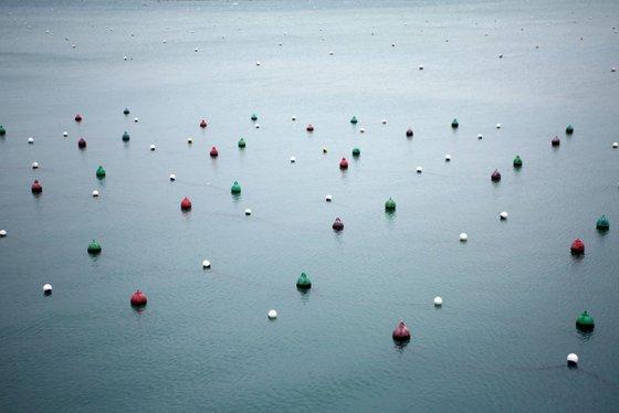 Buoys in Dinard's port