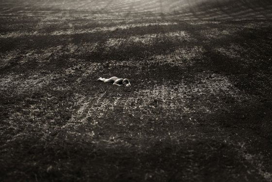 Telluric Fields I. - Art Nude