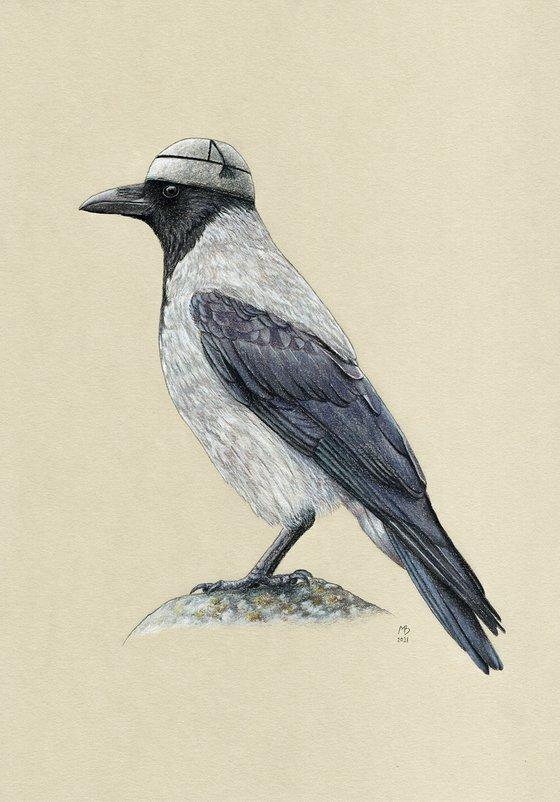 "Original pastel drawing bird ""Hooded crow"""