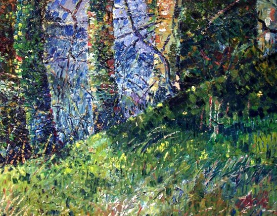 Hillside road through trees