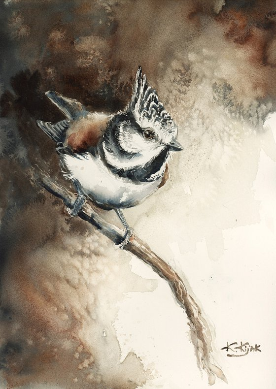 Crested tit, wildlife, birds watercolours