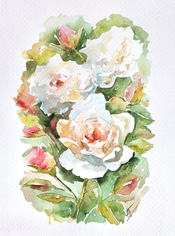 Watercolor roses illustration. White roses with pink on green leaves