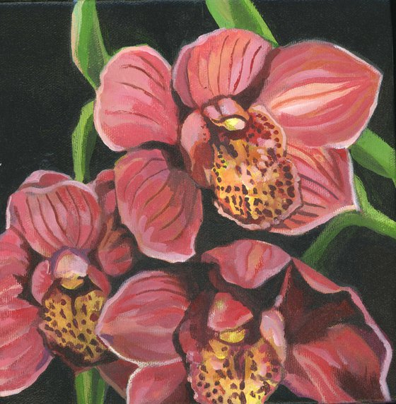 coral orchid acrylic floral