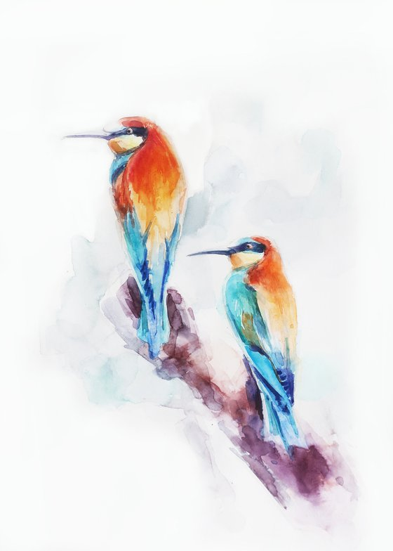Couple of colored birds