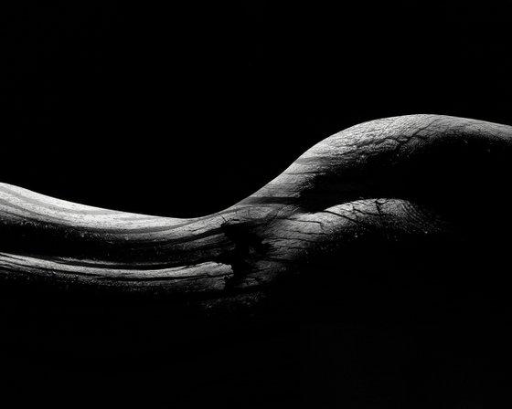 Body Shape Part 1