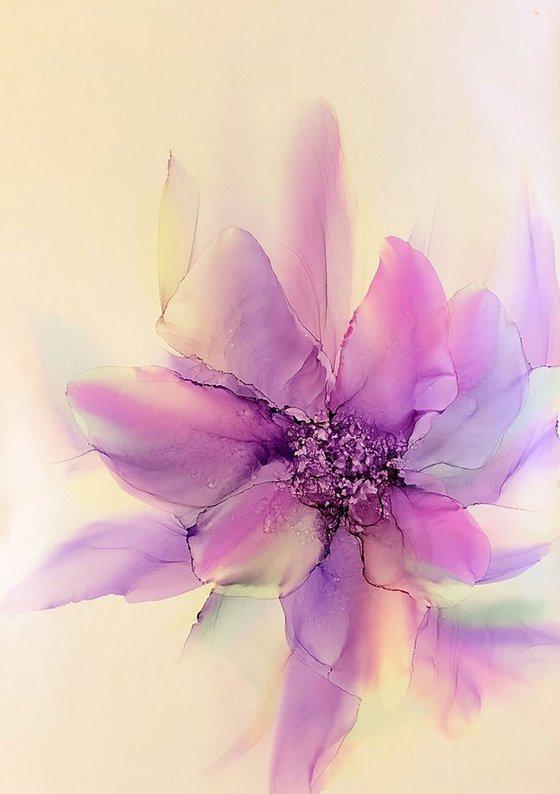 Purple ephemeric Flower