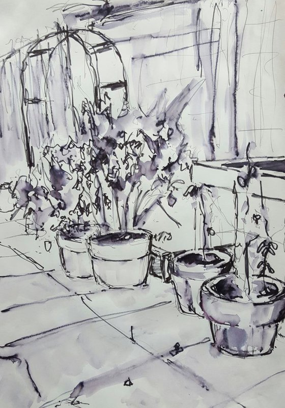 Roof Garden Plant Pots