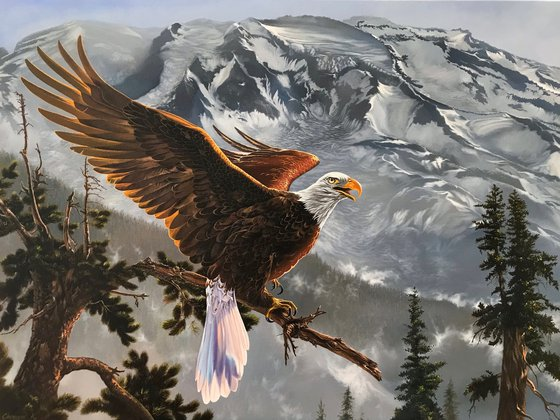 Eagle in the mountains