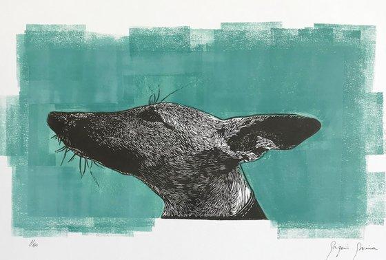 log nose, long ears