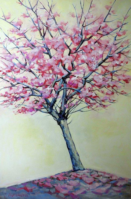 Blossom tree SALE