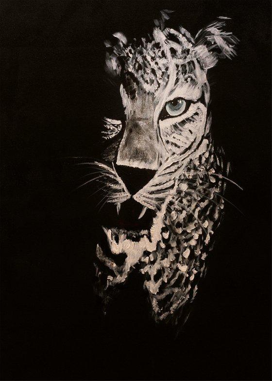 Leopard in the dark