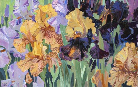 Irises. Beige. Blue. Lilac