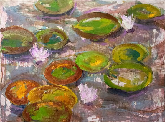 après monet (water lilies)