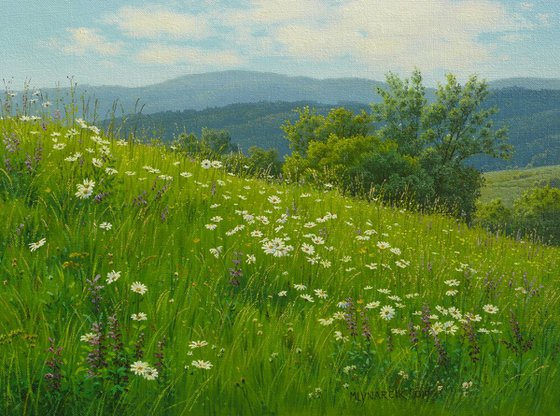 Floral spring meadow