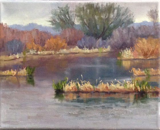 Winter's Pond