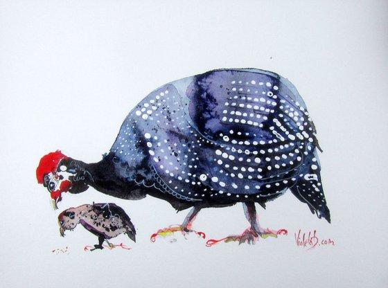 Guineafowl 4