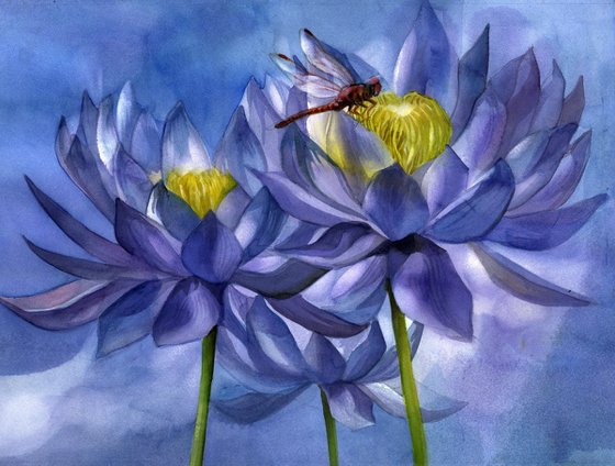 red dragonfly with blue waterlilies