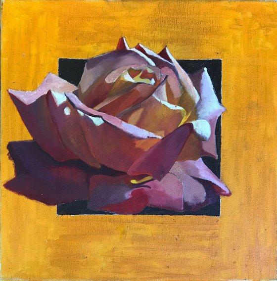 Rose. Gallery wrap.