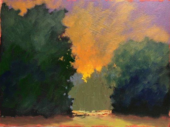 Sunset Dreams #1