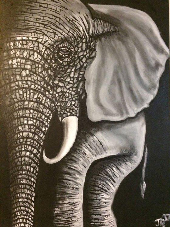 A Elephant never forgets
