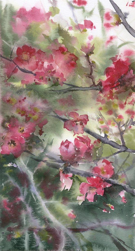 Pink blossom 1. Tender flowers