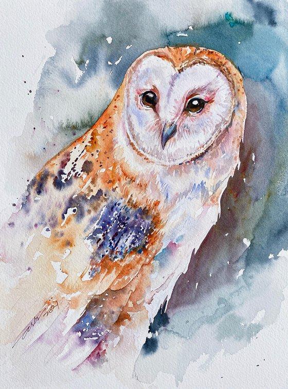 Barn Owl Beeley