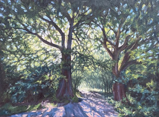 Two Oaks in Arrandene