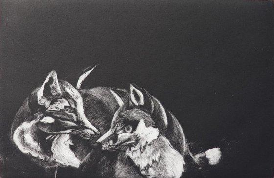 Foxes Mezzotint Original Print