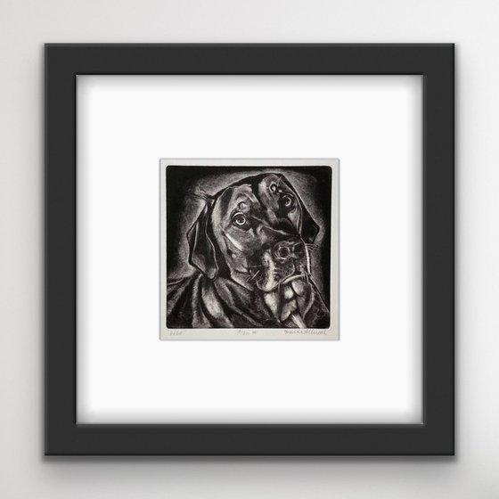 DOG MEZZOTINT - Original Print